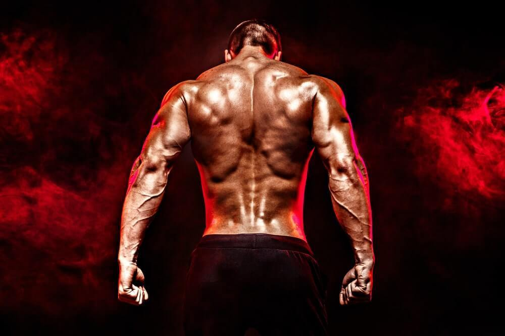 Back Training - The skinny on getting jacked
