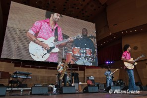 180609_16a_640_©_Willem_Croese_Chicago_Blues_Festival