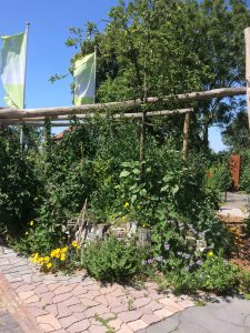 Stapelmuur en diversiteit in beplanting