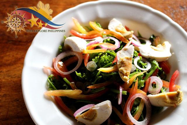Abe's Farm Magalang Pampanga Paco Salad