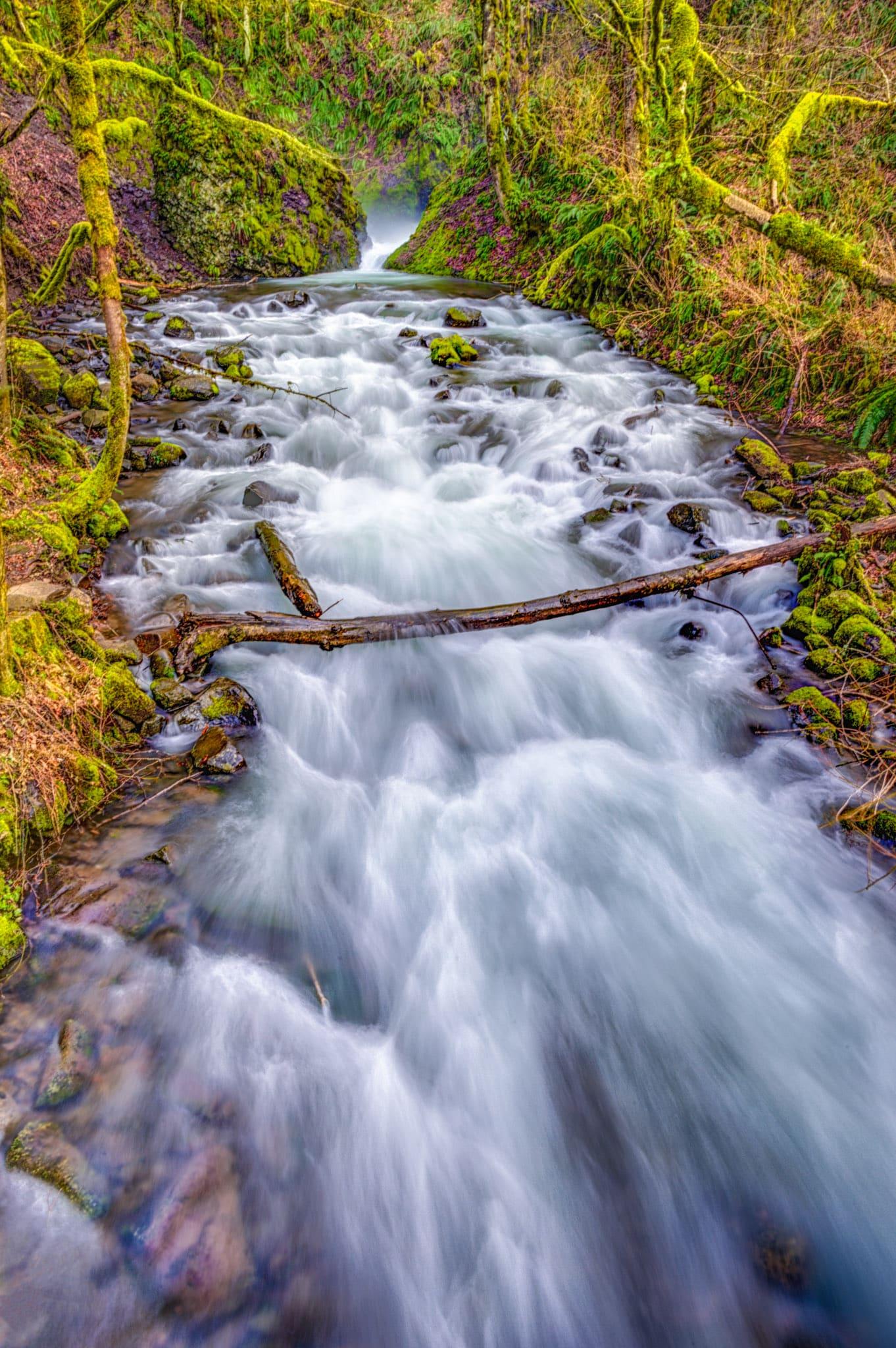 Columbia River Gorge Scenes William Horton Photography