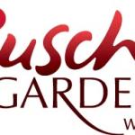 live music busch gardens
