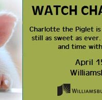 Watch-Charlotte-Grow library