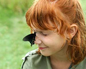 Family Butterfly Count