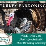 Turkey-Trot-Pardoning