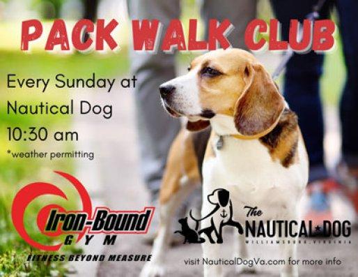 dog-walking-club-williamsburg-va