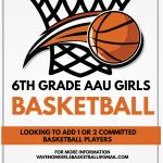 Venom Girls 6th Grade AAU Travel Basketball - is looking for 1 or 2 more dedicated players!