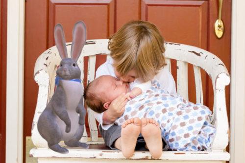 google 3d animals easter bunny