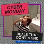 Cyber Monday! Deals that don't stink!