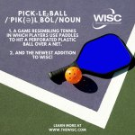 Pickleball now at WISC!