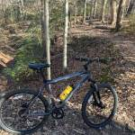How about Mountain Biking York River State Park Laurel Glen / Bob Cat Run Trail?