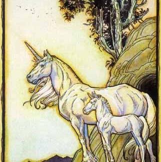 World of Fantasy Notecard Set