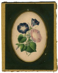 Lot 127: Isaac Sprague Watercolor and Book