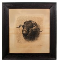 Lot 219: Print of Ram's Head