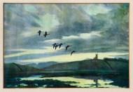 Lot 232: Six Duck Prints