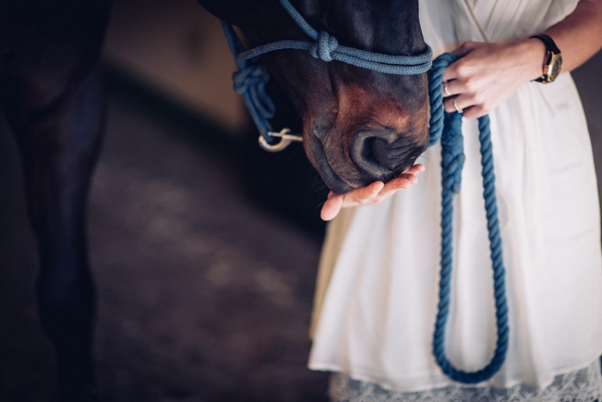 will marsala wedding photography preboda hipica con caballos-002