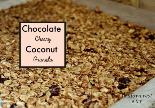 willowcrest lane chocolate cherry granola