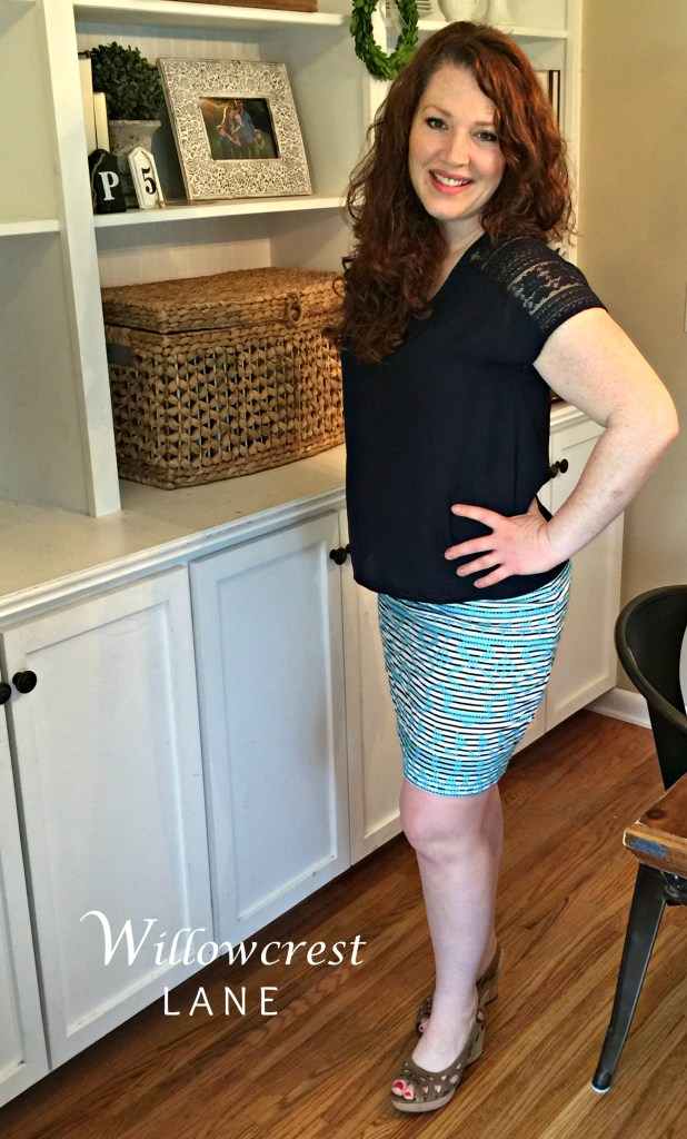 Willowcrest Lane Stitch Fix Review: THML Brandi Embroidered Skirt