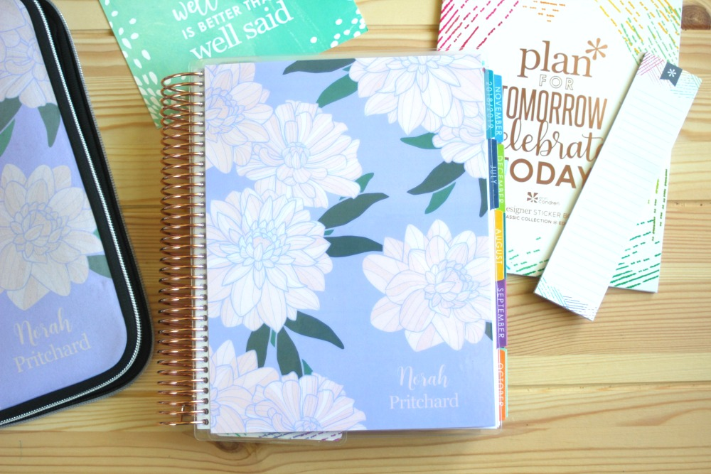 photograph about Erin Condron named 2019 Erin Condren Lifestyle Planner Evaluation - Norah Pritchard