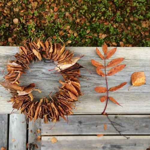 easiest-wreath-new-photo