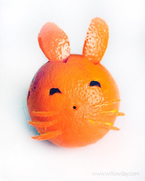 bunny-orangesnewa