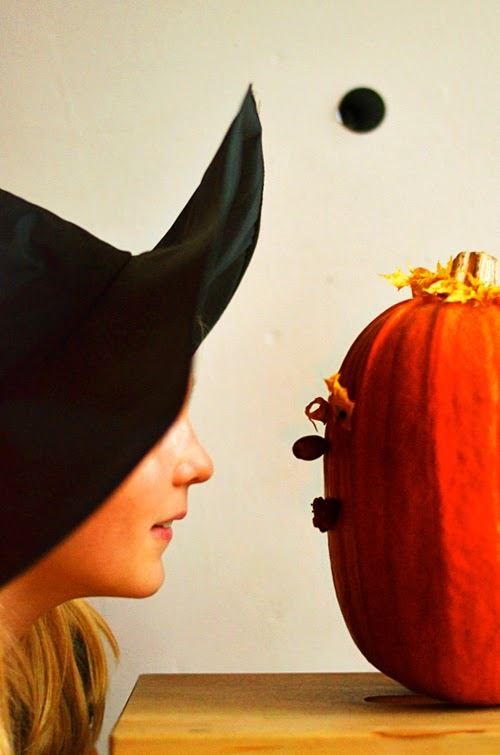 15-pumpkin-staredown