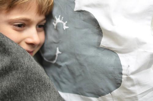 25-feb-pillows_grays-head-on-pillow