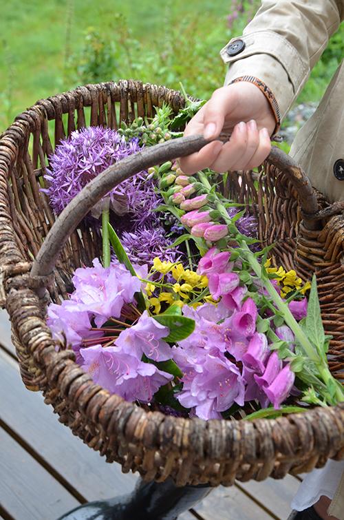 lead_rainorshine_flowers