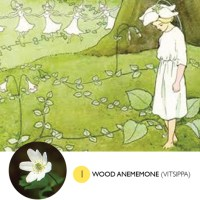 The First 3 Swedish Spring Flowers with Elsa Beskow