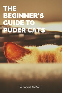 Puder Cats