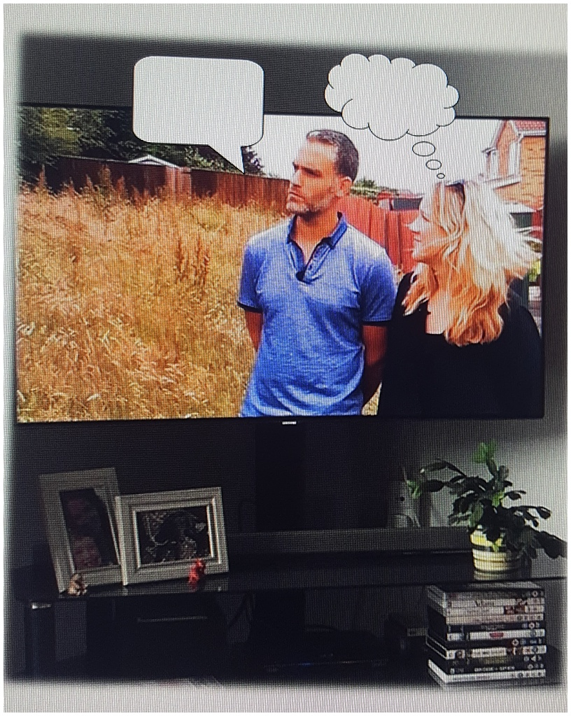 Willowstone developments , builder Burton on Trent, Homes under the hammer caption competition