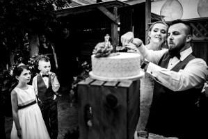 027 - cake cutting wedding photos