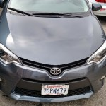 Corolla back to New