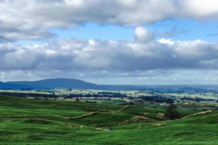 The rolling hills near Matamata, New Zealand.
