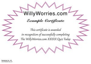 WillyWorries.com-Quiz Sample Certificates
