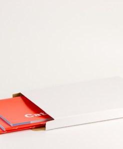 brievenbus doos