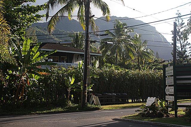 Kauai North Coast 2009