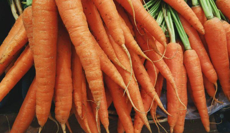 Karotten sind prima Beikost