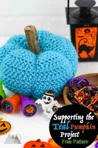 Pretty Little Crochet Pumpkin Free Pattern   This little pumpkin is great for your fall decorations.
