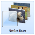 natgeobearswindows7themelogo
