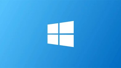 Windows möchte die eigenen Versionen begrenzen 0