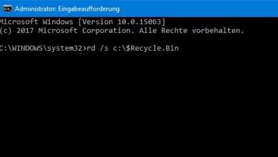 Windows 10: Papierkorb leert sich nicht 0