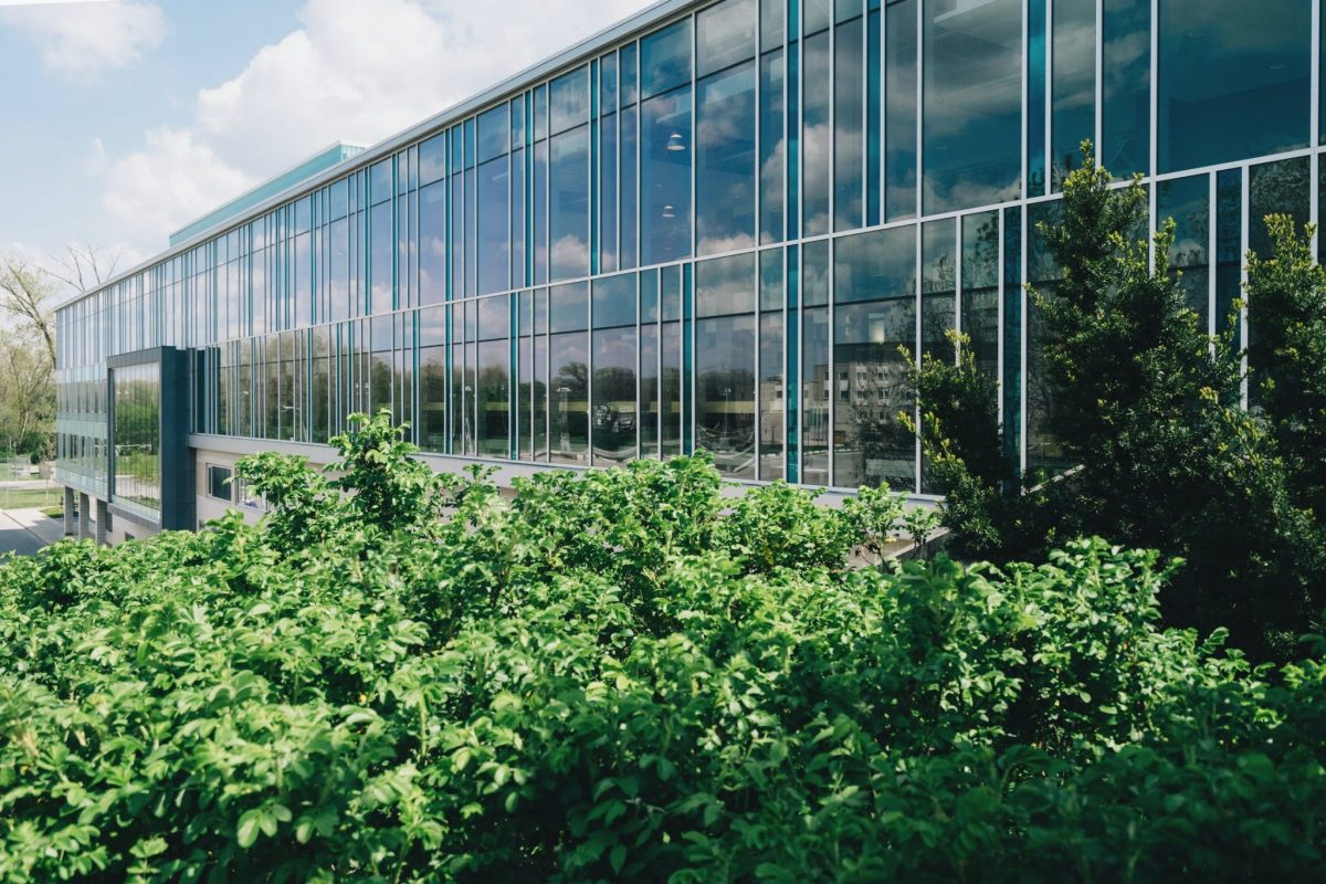 2021 Construction Trends Facilitated By Commercial Window Films - Commercial Window Film in Omaha, Nebraska