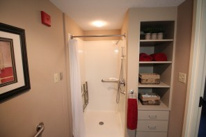 Dogwood Room - Shower