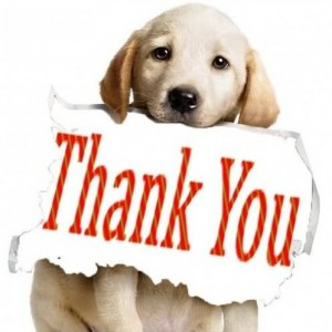 Thank-you-dog-300x300