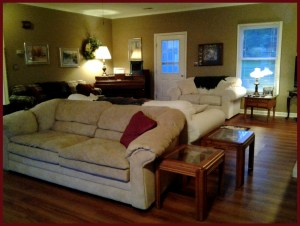 living room_d