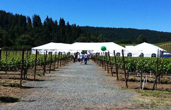 Anderson Valley Pinot Noir Festival 2013