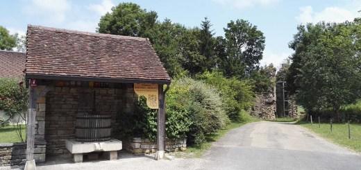 Domaine Berthet-Bondet, Jura, France. July 2016.