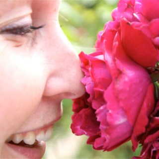 """Smelling the roses."" Photo credit: Matthew Knight. Licensed under CC BY-NC 2.0."