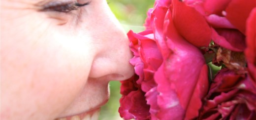 """""""Smelling the roses."""" Photo credit: Matthew Knight. Licensed under CC BY-NC 2.0."""